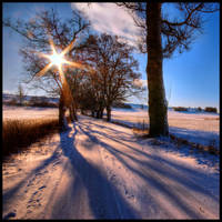 Long shadows crop by JoInnovate