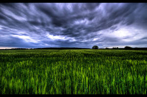 Storm's coming by JoInnovate
