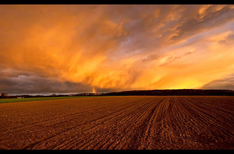 Summer Storm by JoInnovate