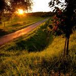 Sunset Boulevard 2.0 by JoInnovate