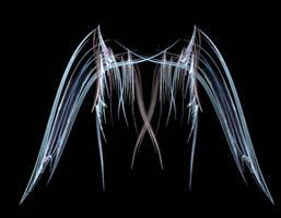 Fractal Wings Stock by XerStock