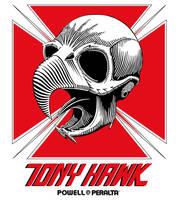 TONY HAWK by sergiotoribio