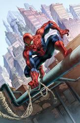 Spiderman Commission Colors by quahkm