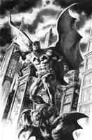 Batman commission 5 by quahkm