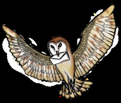 Tyto alba by ottero