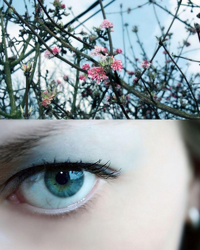 Blue sight by Ambyon