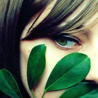 Green window on morning human by Ambyon