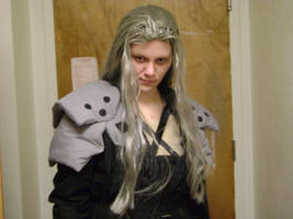 Sephiroth cosplay 3 by cyberelf2029