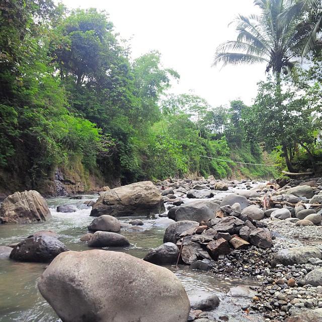 a River at Bogor, Jawa Barat by Pro-lensandmoments