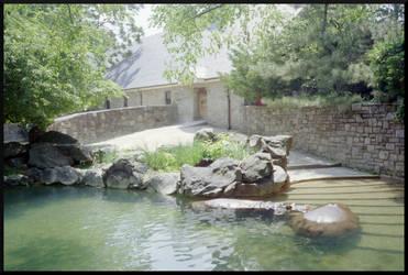 Hippos by TheBishounen55