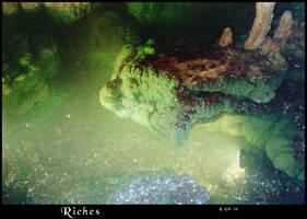 Riches by TheBishounen55