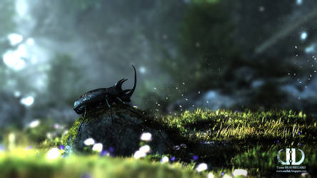 Beetle by ourlak