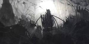 Emporor Spider