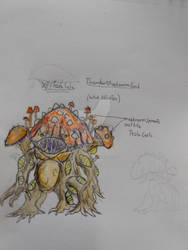 Mushroom kaiju Xi'i Taa lulu concept art