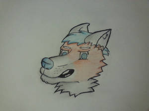 Wolfy head with random color