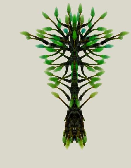 My Paint Tree by creativesam
