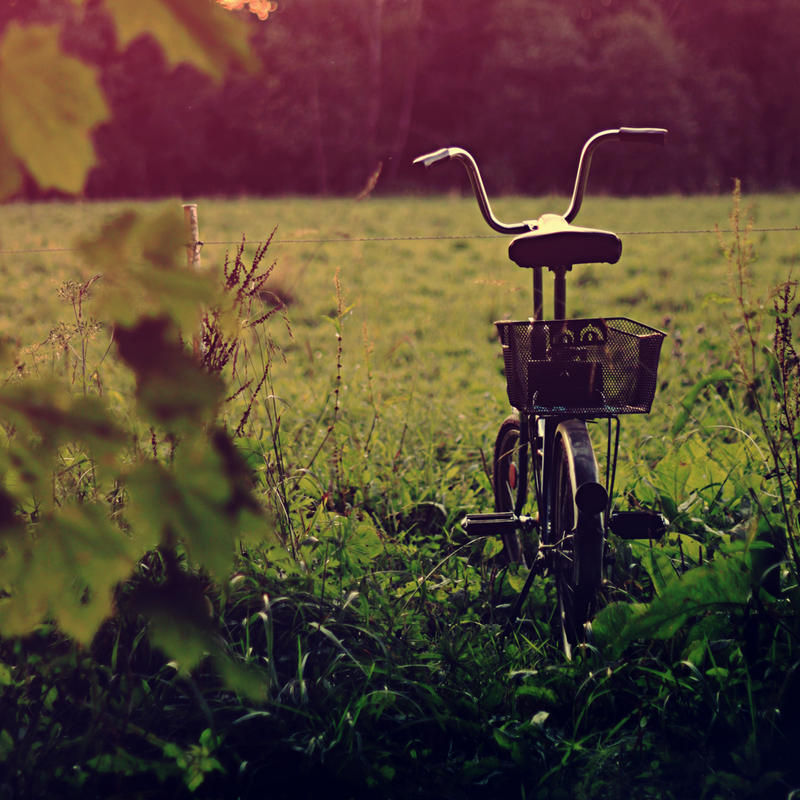 my bicycle by Zi0oTo