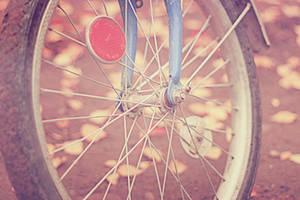 autumn bike ride by Zi0oTo