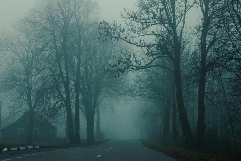 Misty day by Zi0oTo