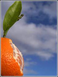 Tangerine Eaten