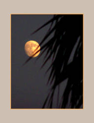 shadows over the moon by Pandora-Gold-Photo