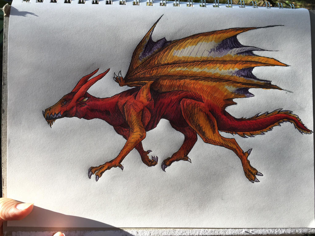 More sketching - dragon again! by DreamerTheTimeLady