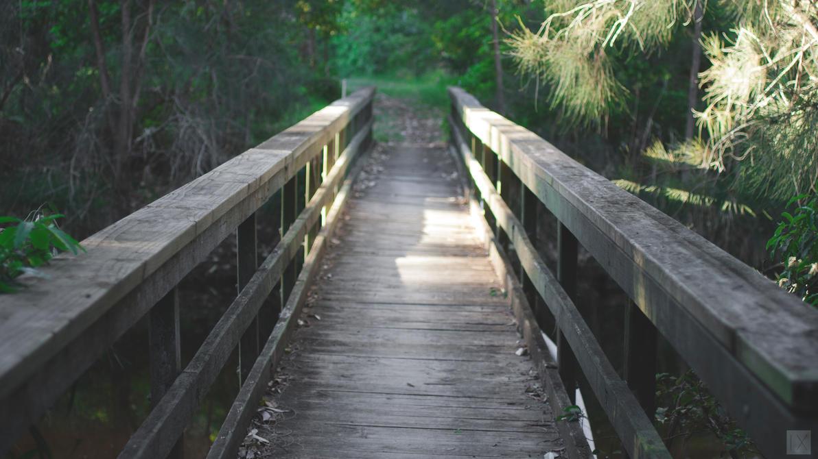 Path by jakndaxta