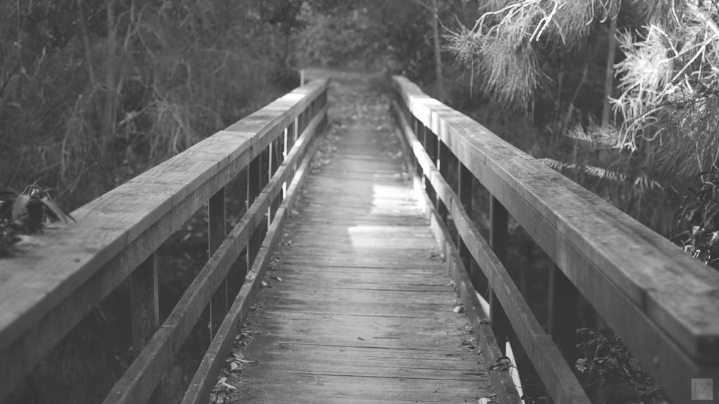 Path, BnW by jakndaxta