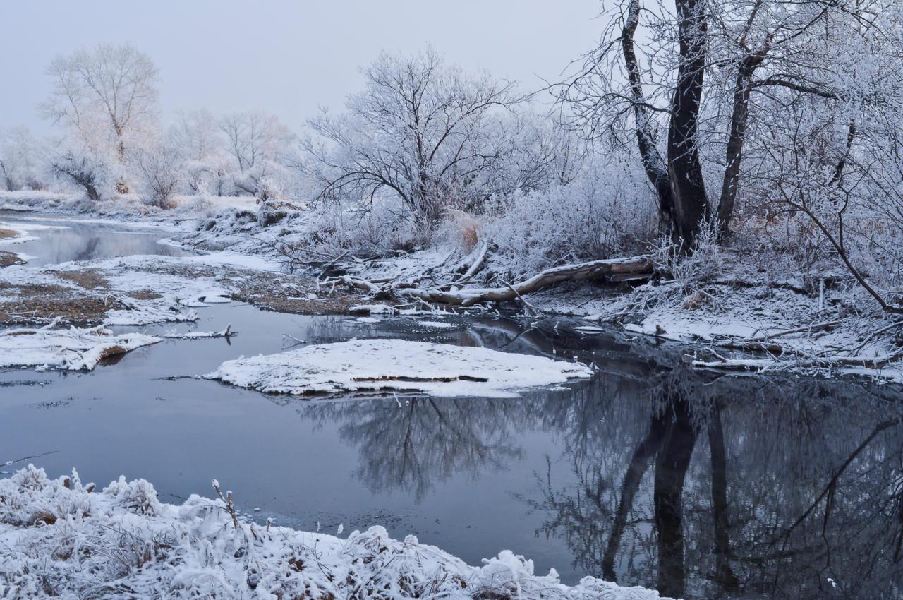 winter2 by Tumana-stock