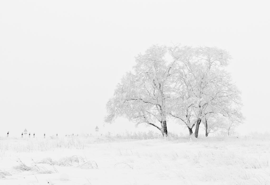 Winter landscapes 1 by Tumana-stock