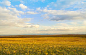 A beautiful sky by Tumana-stock