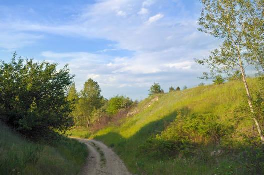 summer landscape