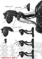 Dominance War IV-machines by Guang-Yang