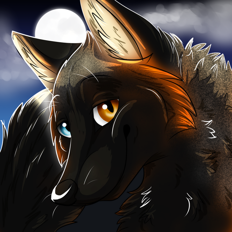 Melanistic by wolfie115