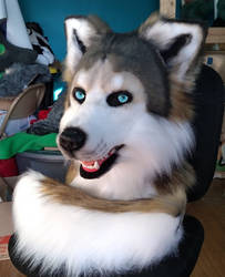 Realistic Wolfdog Head and Tail *SOLD* by Serenity115