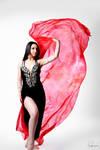 Belly Dancer Veil Stock 20