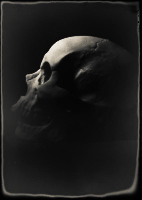 skull again by ArtStudier