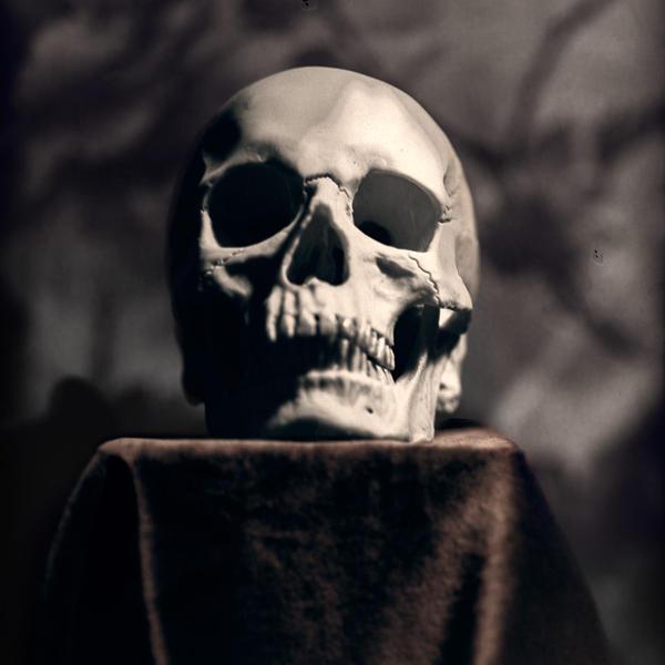 Skull again 2 by ArtStudier