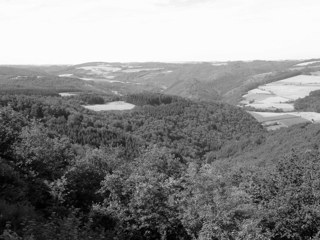 View from Mont Saint Nicolas