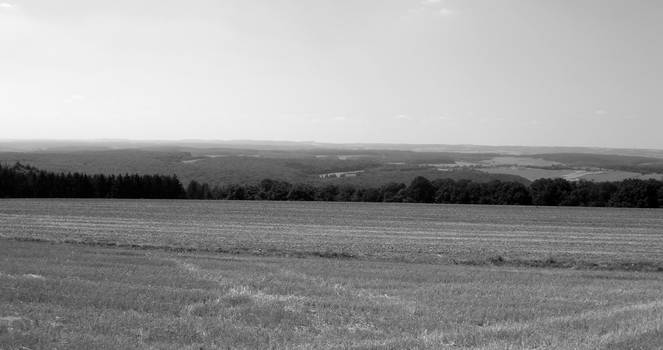 Luxembourgish Countryside 4