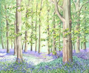 Bluebell Wood by LynneHendersonArt