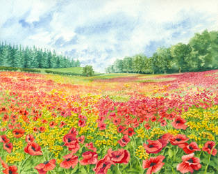 Poppy Field by LynneHendersonArt