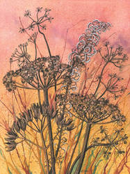 Sunset Seed Heads by LynneHendersonArt