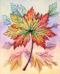 Autumn Leaf by LynneHendersonArt