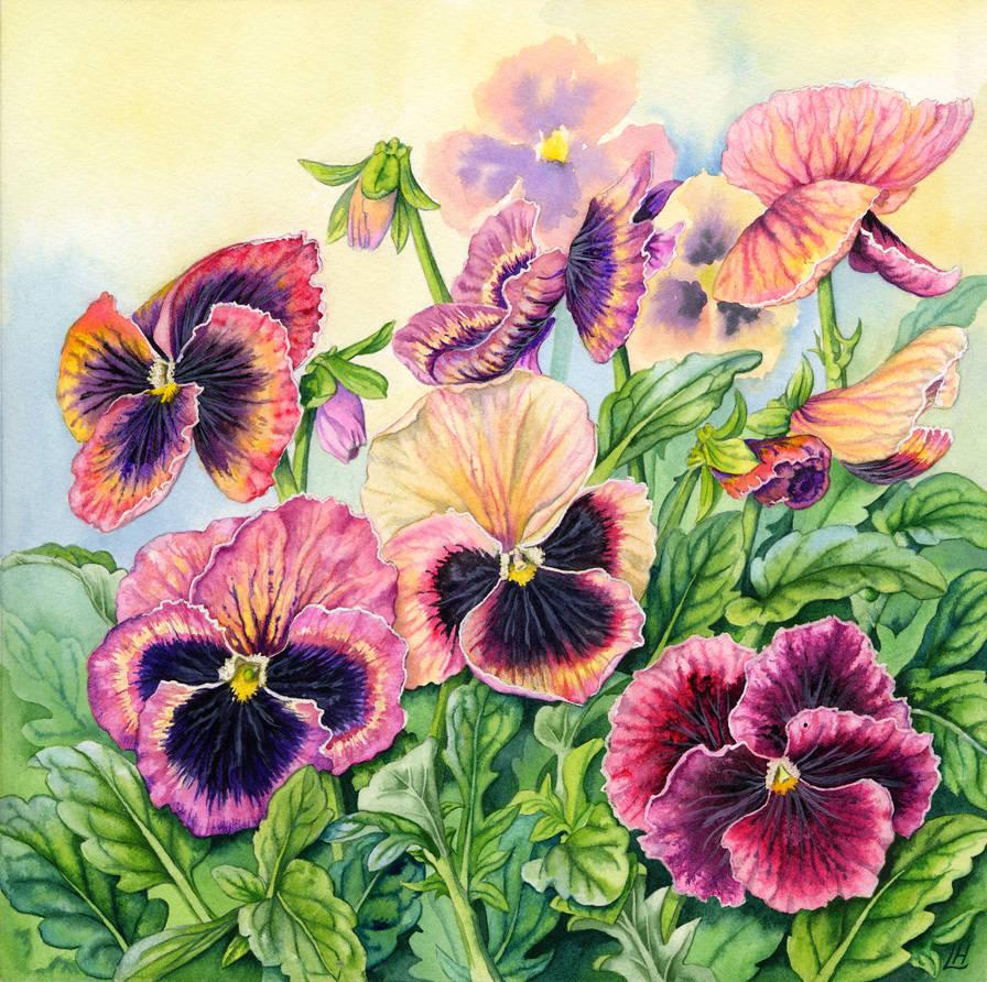 Victorian Pansies by LynneHendersonArt