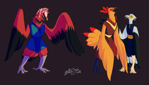 More Birdfolk