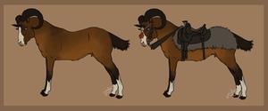 The Mongolian Riding Ram [Equus cornu]