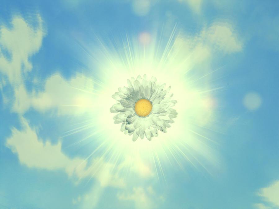 Fleur du Soleil by s3xkytt3n