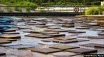 Rockpool Waterway by meechirumaeda