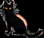 F2U Black Cat